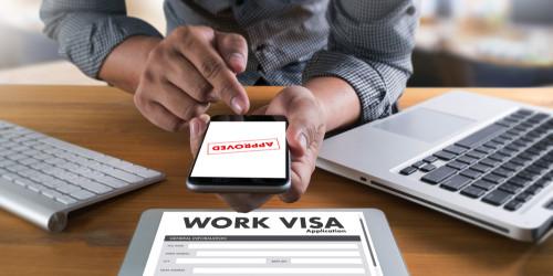 Как получить рабочую визу Нидерландов?