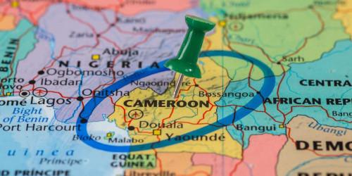 Как получить туристическую визу Камеруна?