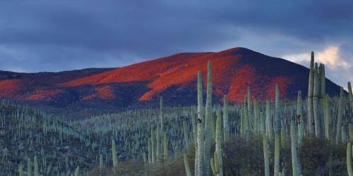 15 причин, по которым вы должны поехать в Мексику прямо сейчас