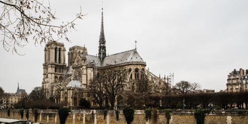 Месть Горбуна: Собор Парижской Богоматери