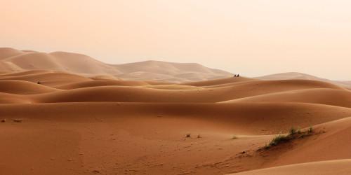 Прогулка по пустыне Гоби