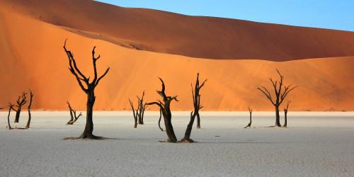 10 фактов, которые надо знать перед поездкой в Намибию