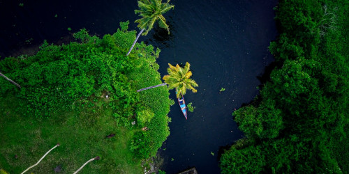 10 причин, по которым вам стоит поехать в Кералу, а не в Дели